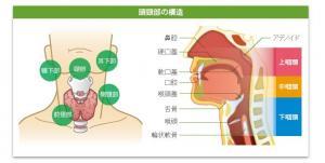 頭頸部外科 開設のお知らせ